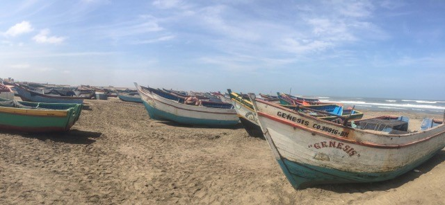 Open-welled vessels known as chalanas line many of Peru's beaches, home to over 16,000 small-scale fishing vessels.
