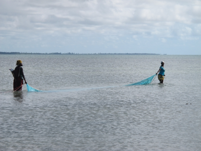 Mosquito net fishing